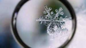 Les merveilles de la neige