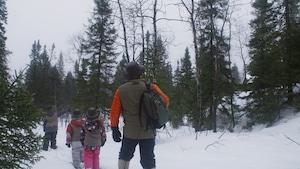 La nature et le froid