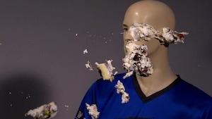La crème glacée bionique