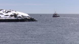 Bateau de pêche au hareng quittant le port