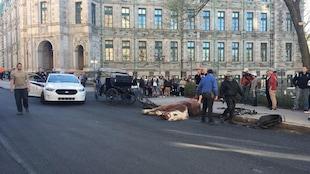 Le cheval aurait trébuché avant de s'effondrer sur le sol.