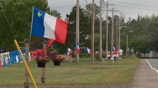 Multiples drapeaux de l'Acadie en bordure d'une route.