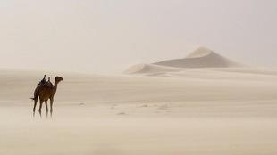 Le fondateur de l'agence de voyage Karavanier, Richard Rémy, s'est rendu dans le désert de Libye en 1985.