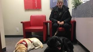 Daniel Bonin est assis avec son chien Cadeau couché à côté de lui et à gauche, le chien Mira à la retraite Fitch est couché.