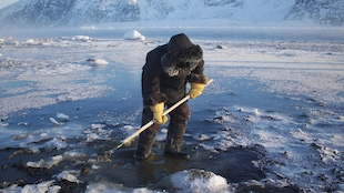 Un homme, les deux pieds dans l'eau, râtelle le fond d'un lac dans le Nord.