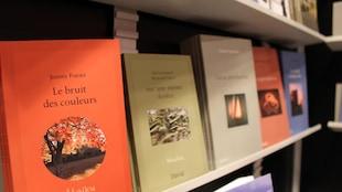 Plusieurs livres publiés par la maison littéraire Les Éditions David apparaissent sur une tablette, un à la suite de l'autre.