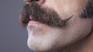 Durant le mois de novembre, les adeptes du mouvement Movember se font pousser la moustache pour attirer les dons pour la recherche contre le cancer de la prostate.