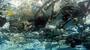 Des déchets dans l'eau