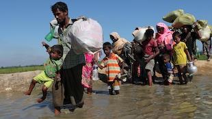 Des réfugiés rohingyas tentent de rejoindre la frontière du Bangladesh à pied.