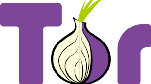 Le logo de TOR, constitué de la lettre T majuscule, d'un oignon coupé laissant voir ses couches intérieures et de la lettre R minuscule.