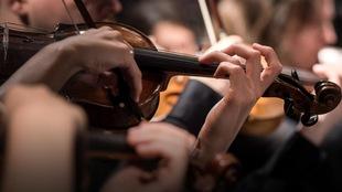 Des violonistes en action.
