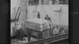 Image en noir et blanc montrant des hommes à bord d'un navire recevant un chargement porté par des câbles.