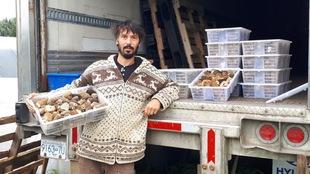 Le spécialiste devant un camion contenant des caisses de morilles, prêtes à être transportées.