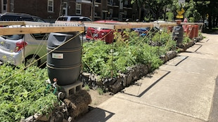 Une structure faite de bois, de cordes et de murets de pierre contenant des parcelles de verdure, en bordure d'un trottoir.