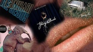 Les cinq albums proposés, étalés sur un lit de roses.