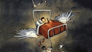 Illustration fantaisiste dans laquelle on peut voir un jeune garçon dans un lit de pensionnat. Il a les yeux ouverts et son expression est neutre. De grandes ailes blanches font voler le lit. Une douzaine d'outardes volent autour du lit.