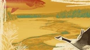 Montage contenant un fond hivernal de rivière avec saumon, outarde et thé du Labrador.
