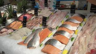 Plusieurs sortes de poissons.