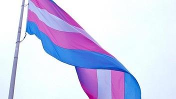Transgenres : contrer la discrimination au travail