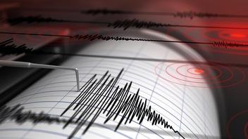Aucune preuve que les animaux ressentent l'imminence d'un séisme
