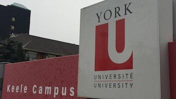 Prévention de la violence sexuelle:une professeure de l'Université York honorée