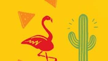 Àgagner :un voyage en famille au à Isla Mujeres, au Mexique