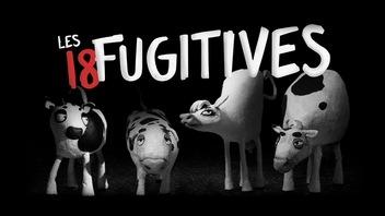 Le trésor d'ICI Tou.tv : <em>Les 18 fugitives</em>, d'Amer de Paul Cowan et Amer Shomali