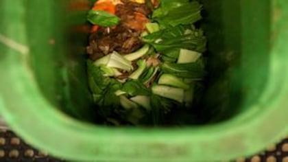 Sacs compostables: le vrai du faux