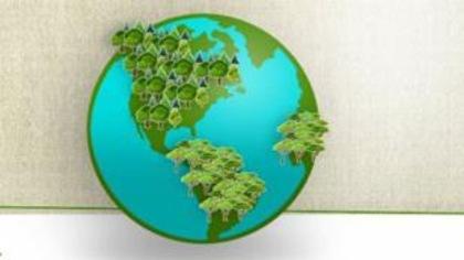 Combien de km² de forêt disparaissent chaque année?