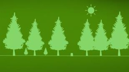Combien de plants d'arbres pour reboiser le Québec?