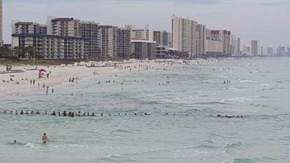 Une chaîne humaine sauve une famille de la noyade en Floride