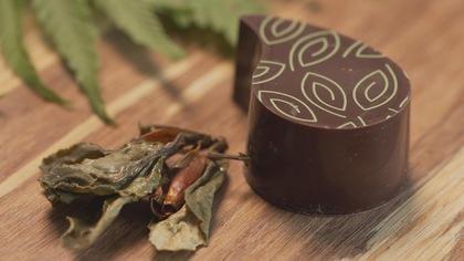 Chocolat et gin aux saveurs de la Gaspésie