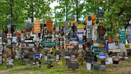 Des dizaines de panneaux accrochés à des poteaux en bois