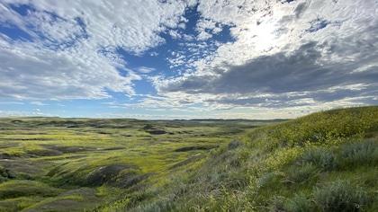 Un spectacle céleste inégalé au parc national des Prairies