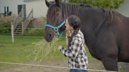 Mousseline et Auguste sont deux chevaux d'exception. Voyez un extrait.