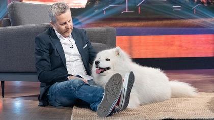André Robitaille est assis dans le studio des Poilus avec un gros chien samoyède.