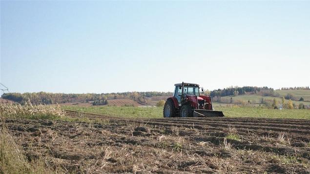 Un tracteur dans un champs agricole