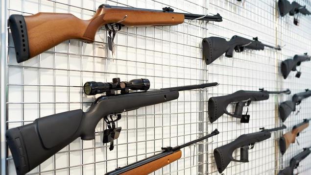 Des armes à feu accrochées à un grillage installé au mur.
