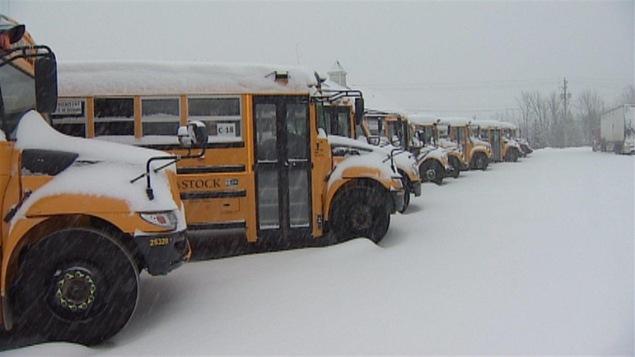 Des autobus scolaires immobiles dans la neige