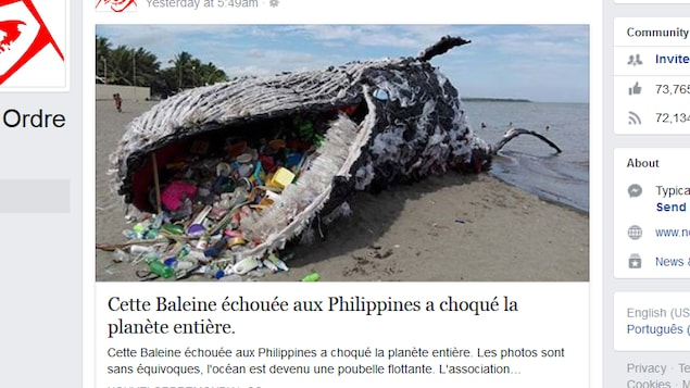 Capture d'écran d'une publication Facebook montrant une campagne de Greenpeace contre la pollution marine.