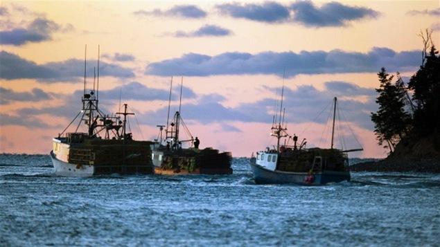 Trois bateaux de pêche au lever du jour