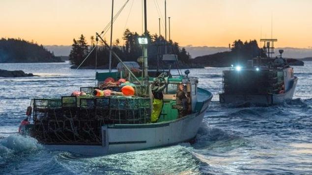 Les permis de pêche peuvent parfois être vendus pour des centaines de milliers de dollars.