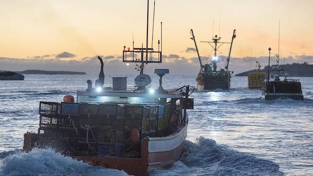 Des bateaux de pêche au homard prenne le large à l'aube.