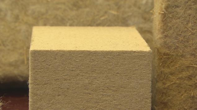 Nature Fibres est la première en Amérique du Nord à se spécialiser dans la production d'écomatériaux. On aperçoit ici des matériaux faits à partir de chanvre.