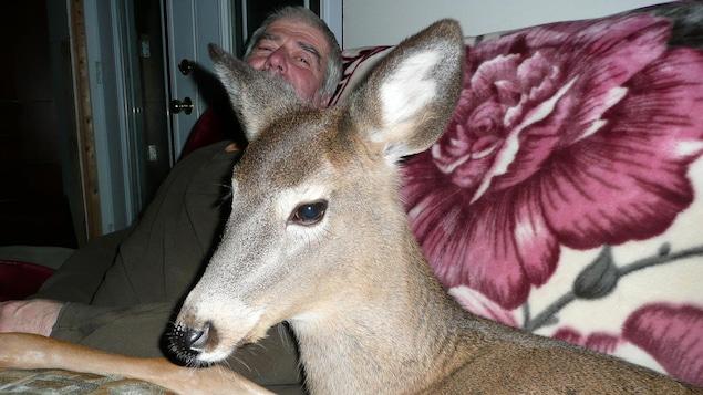 Yves Martel et sa biche trouvée il y a plus de 4 ans. Tous deux sont assis sur un canapé.