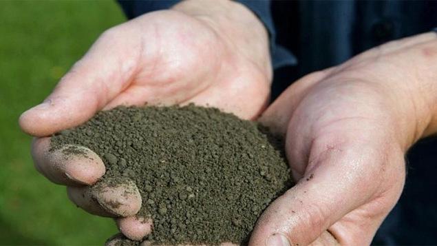 Un tas de terre entre deux mains.