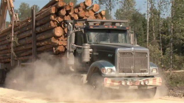 Un camion transportant du bois.