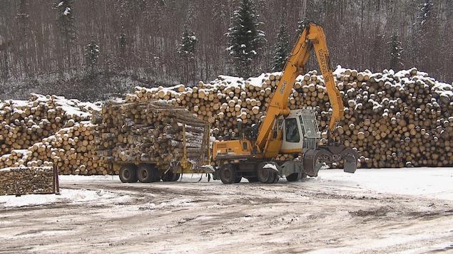 Des billots de bois et une machinerie forestière.