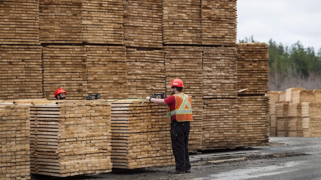 Des travailleurs du bois d'oeuvre qui empilent des planches de bois les unes par-dessus les autres.