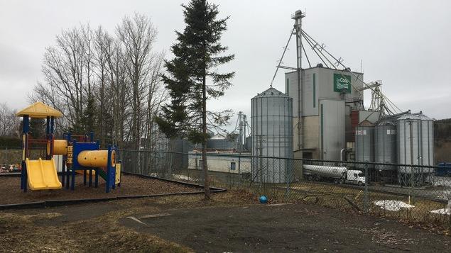 Le boisé séparait le CPE des installations de la Coop Purdel et de la 132.